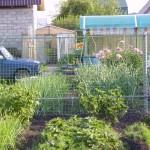 Забор из сетки рабицы в тюмени купить